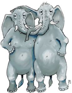 2 olifanten
